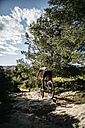 Mountain biker on the move - JRFF000716