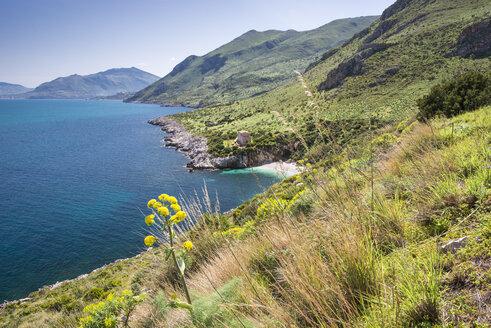 Italy, Sicily, Province of Trapani, Riserva naturale orientata dello Zingaro, Cala Tonnarella dell'Uzzo - HWOF000109