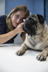 Veterinarian examining ears of a dog with an otoscope in a veterinary clinic - ABZF000614