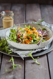 Rainbow salad with spinach leaves, peas, carrots, mung bean sprouts, quinoa, parsly, pea sprouts, red cabbage - SBDF002925