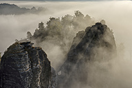 Germany, Saxony, Elbe Sandstone Mountains, Neurathen Castle in the morning fog - RUEF001710