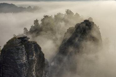 Germany, Saxony, Elbe Sandstone Mountains, Neurathen Castle in the morning fog - RUEF001710