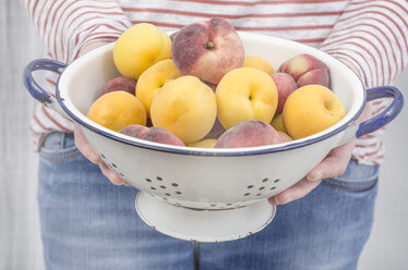 Woman's hands holding colander with apricots and flat peaches - ODF001390