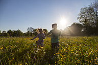 Brother and sister running on field of flowers at springtime - SARF002746