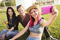 Friends sitting on grass taking selfies - JASF000828