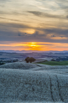 Italy, Tuscany, Val d'Orcia, Fields at sunset - LOMF000302