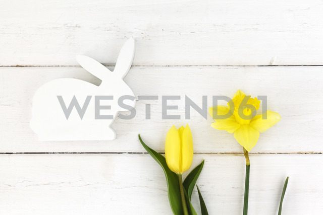 White wooden Easter bunny and yellow daffodil and tulip - EVGF002980