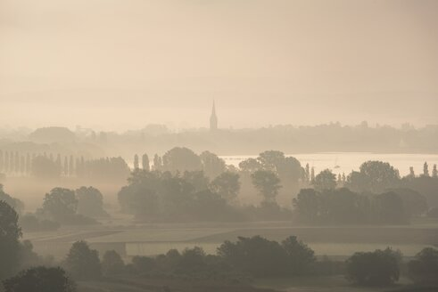 Germany, Constance district, Lake Constance, Radolfzell, View to Radolfzeller Aachried in the morning, fog - ELF001773