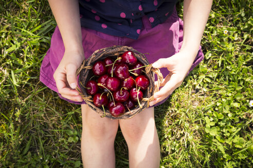 Girl sitting on a meadow holding punnet of sweet cherries, partial view - LVF004960