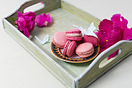 Strawberry and raspberry macarons - MYF001524