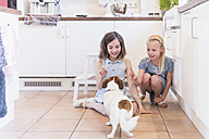 Two little girls teaching their dog in the kitchen - MJF001825