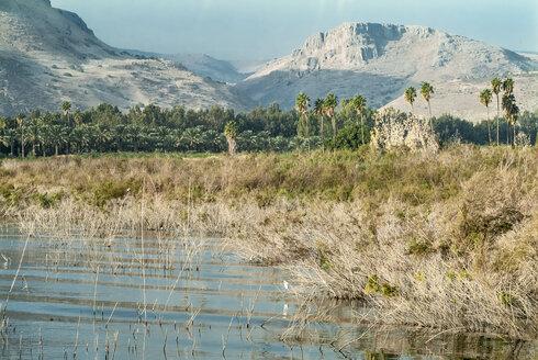 Israel, west shore of Sea of Galilee - HWOF000129