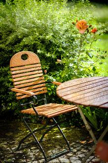 Garden table and chair, summer rain - HAMF000210