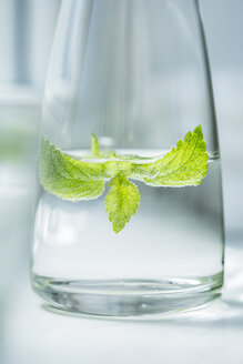 Glass bottle of water flavored with lemon balm - OJF000141