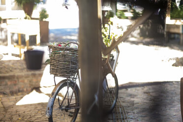 Bicycle with wicker basket - ZEF008760