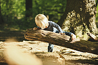 Little boy playing in forest - SBOF000135