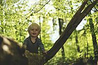 Happy little boy in forest - SBOF000138