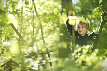 Girl in forest climbing in tree - SBOF000147