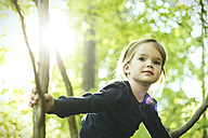 Girl in forest climbing in tree - SBOF000150