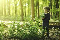 Girl in forest picking flowers - SBOF000159