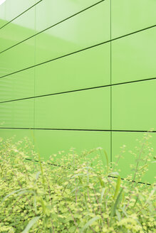 Germany, Wuppertal, green facade of university - SKAF000018