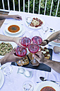 Friends toasting with lambrusco wine during a summer dinner - ABZF000725