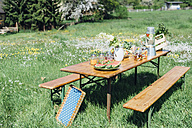 Beer table set with fruit and drinks on meadow - MJF001899