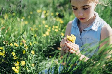 Grl picking flowers from meadow - MJF001965