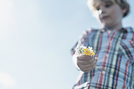 Boy holding wildflowers - MJF001968