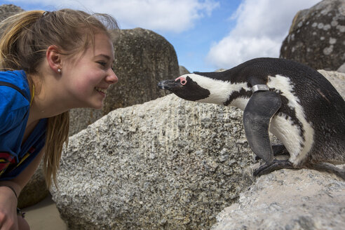 South Africa, Capetown, teenage girl and african penguin, Spheniscus demersus - YRF000111