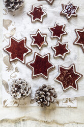 Home-baked star-shaped Christmas cookies - SBDF002988