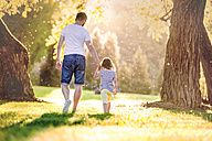Back view of father and his little daughter walking hand in hand on a meadow in the park - HAPF000580