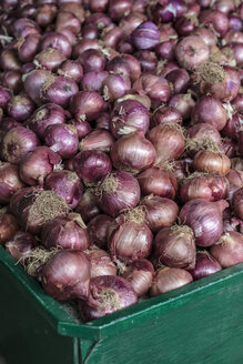 Onions in a large crate - DEGF000881