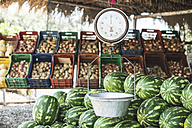 Pile of watermelons and scales on the market - DEGF000889
