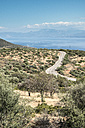 Greece, Panormos, road, olive plantations and the sea - DEGF000904
