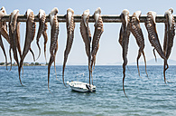 Greece, Agria, octopus hanging to dry on bar at the sea - DEGF000910