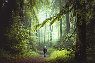 Man walking on forest track in morning light - DWIF000754
