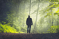 Man walking on forest track in morning light - DWIF000757
