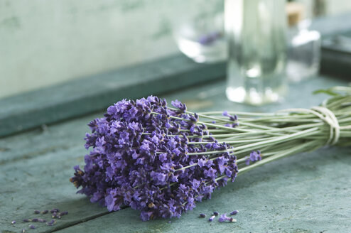 Bunch of lavender - ASF005930