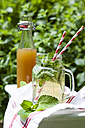 Homemade lemonade with a variety of herbs - SBDF003000