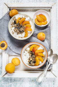 Yogurt with crunchy muesli and fresh apricot - SBDF003012