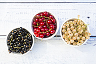 Three bowls of black, red and white currants - LVF005099