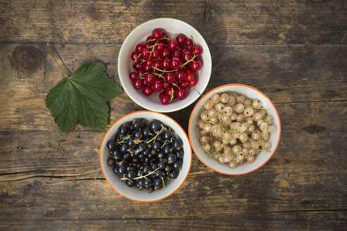Three bowls of red, white and black currants and a leaf on dark wood - LVF005105