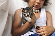 Hands of little boy holding tabby kitten - VABF000665