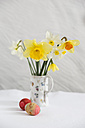 Daffodils and Easter eggs - MYF001686