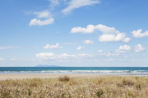 New Zealand, North Island, Coromandel region, Waihi Beach, South Pacific, beach - GWF004845