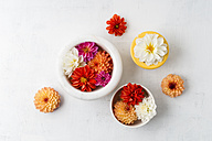 Bowls with blossoms of different sorts of dahlias on white ground - MYF001696
