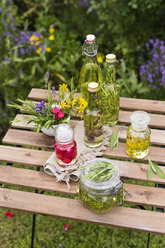 Different herb oils, thyme, rose, lavender, salve, rosemary and saint john's wort - MYF001697
