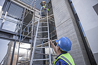 Two construction workers on scaffolding working on construction site - ZEF009186