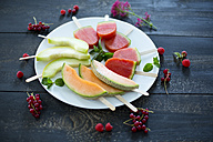 Plate of homemade watermelon ice lollies, slices of Galia and Cantaloupe melon - MAEF011915